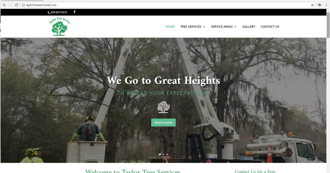 Online Marketing and Website Design for Taylor Tree Service, Prattville Alabama