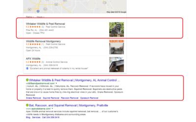 Search Engine Optimization Montgomery, AL